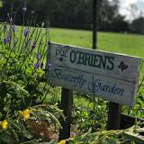 OLGC Garden Ministry 2014 - OLGC%2BButterly%2BGarden%2BSign%2B062318.jpeg