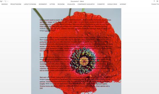 immagine-sfondo-word2013