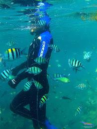 pulau harapan, 6-7 juni 2015 gopro 041