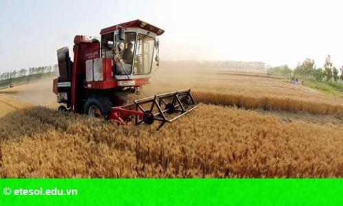 Hình 1: Trung Quốc trợ cấp 165 tỷ đôla cho nông nghiệp