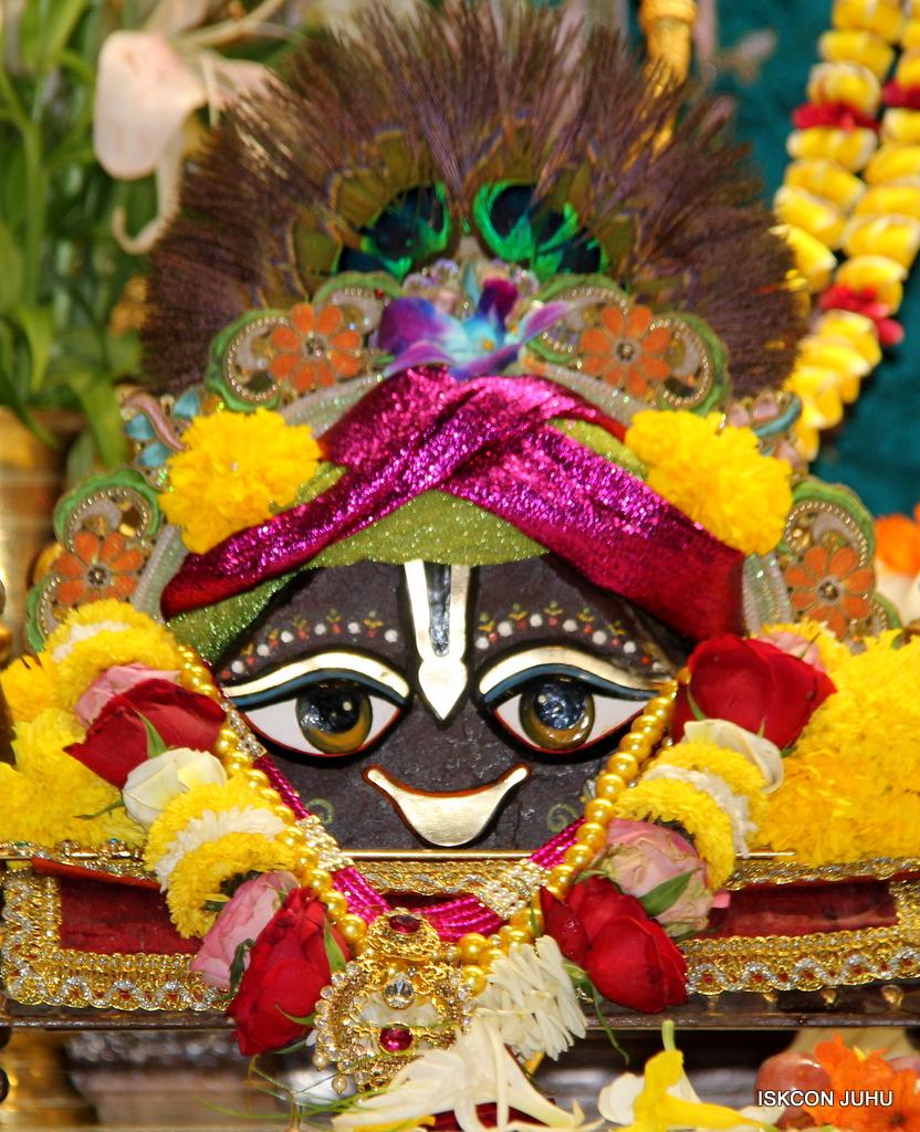 ISKCON Juhu Sringar Deity Darshan on 25th Oct 2016 (13)