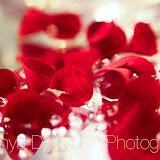 color_446.jpg