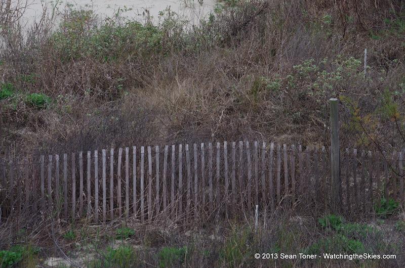 Surfside Beach Spring Break - IMGP5418.JPG