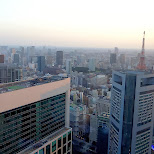 view of Tokyo prior to dusk in Shinagawa, Tokyo, Japan