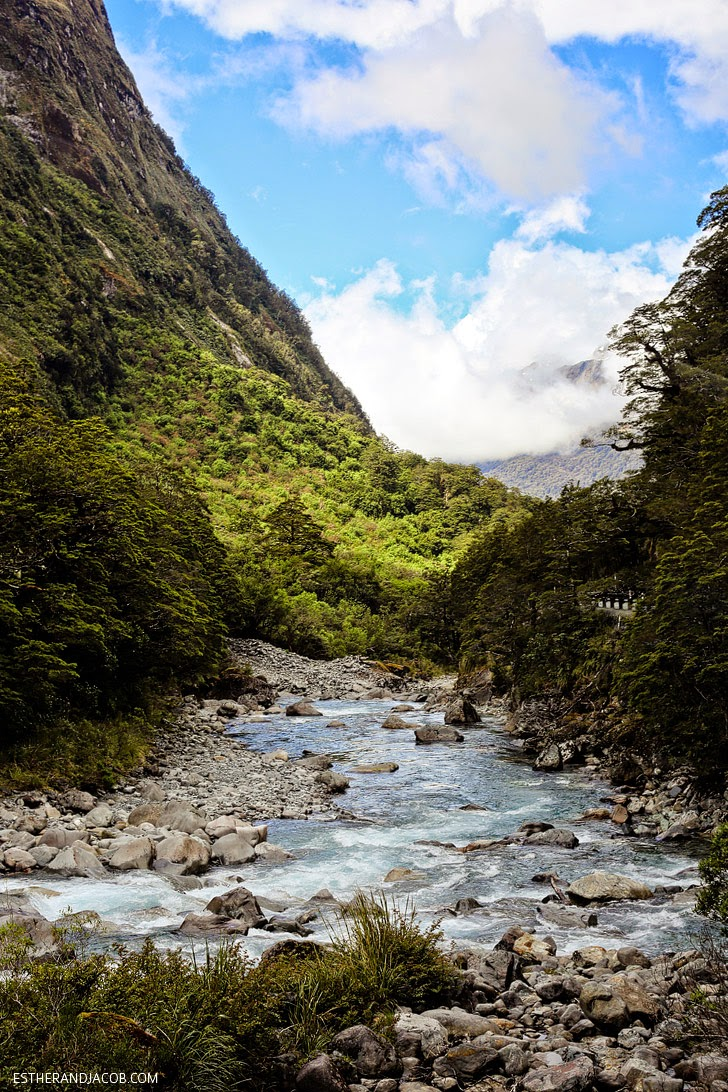 Fiordland National Park and Milford Sound New Zealand   Day 5 Sweet as South Contiki Tour.