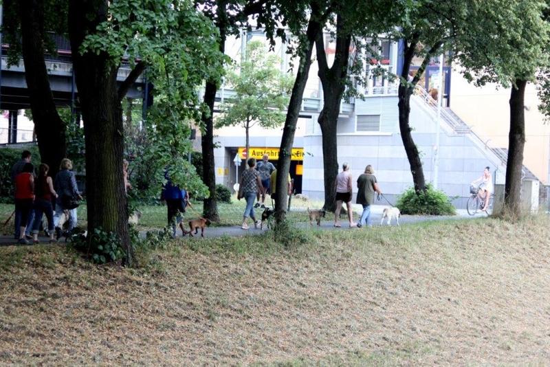 On Tour in Bayreuth: 7. Juli 2015 - Bayreuth%2B%252819%2529.jpg