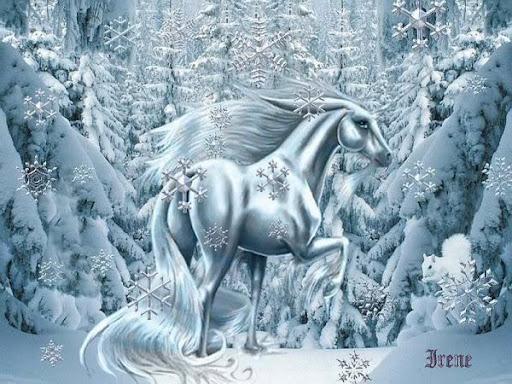 snowy_magic.jpg