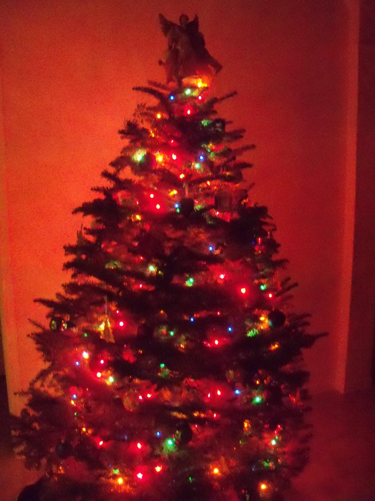 Christmas 2011 - 115_1129.JPG