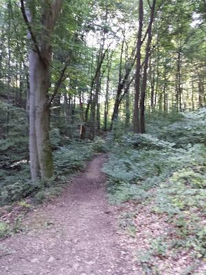 Am Weg zum Final von Kalksburger Impressionen (GC39WX4)