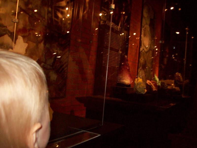 Houston Museum of Natural Science, Sugar Land - 114_6669.JPG