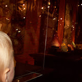 Houston Museum of Natural Science, Sugar Land - 114_6669.JPG