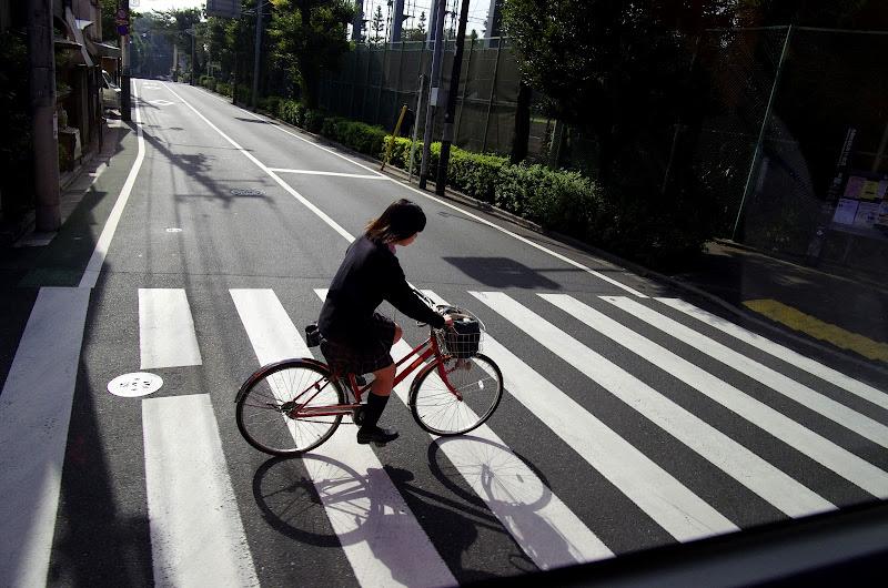 浮光 掠影 東京