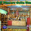 IL PIACERE DELLA VITE E TOP CARD ITALIA.jpg