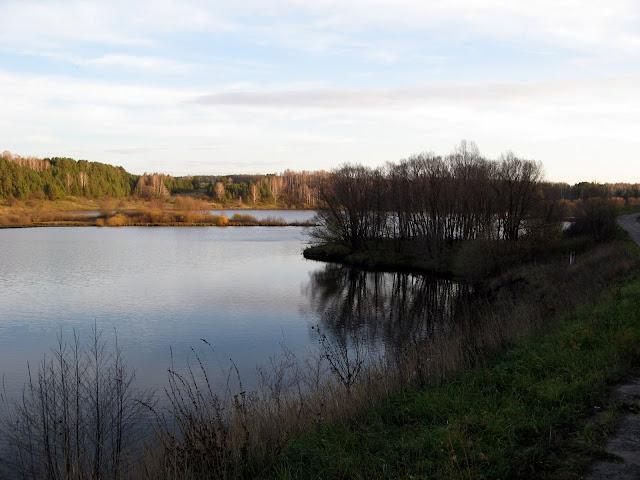 пруд Нижнедубенск