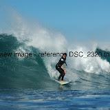 DSC_2320.thumb.jpg