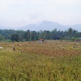 CianjurIndonesia