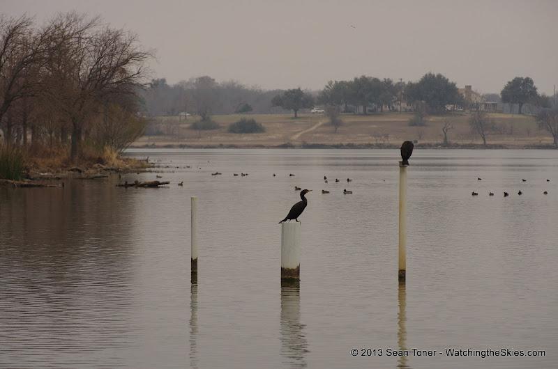 01-26-13 White Rock Lake - IMGP4301.JPG