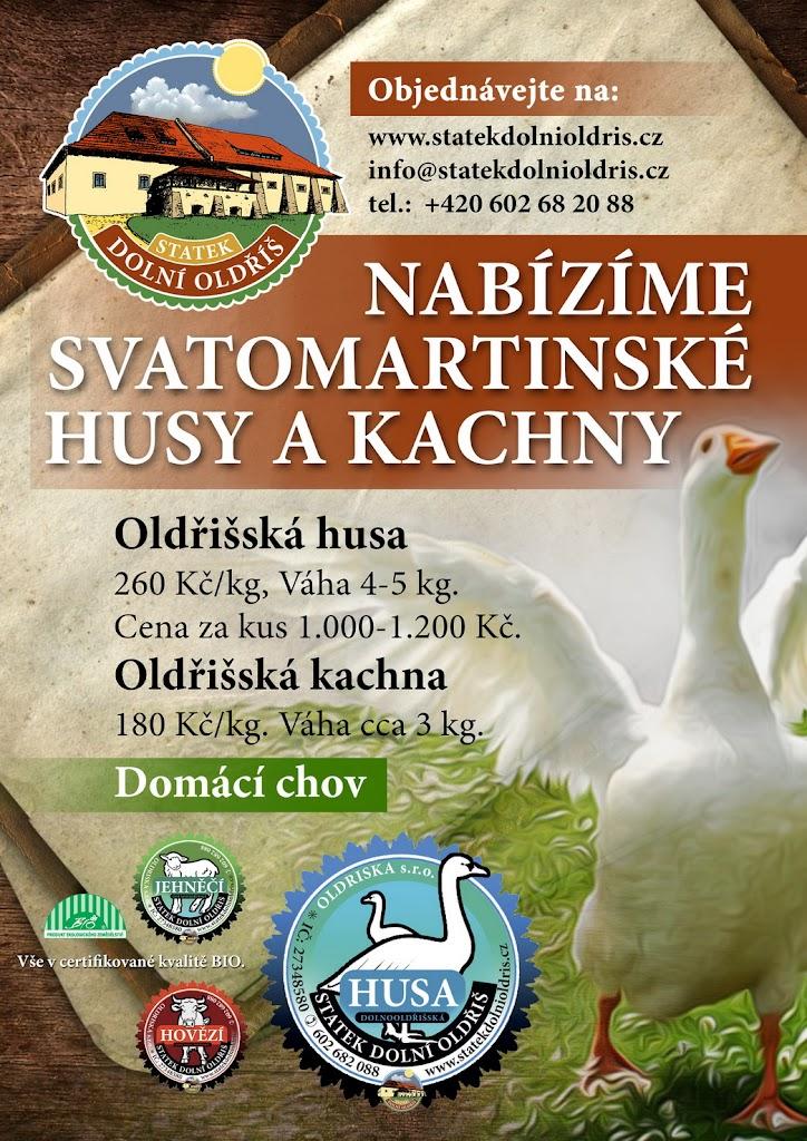 savatomartinska_hua_kachna_rijen_2013_006