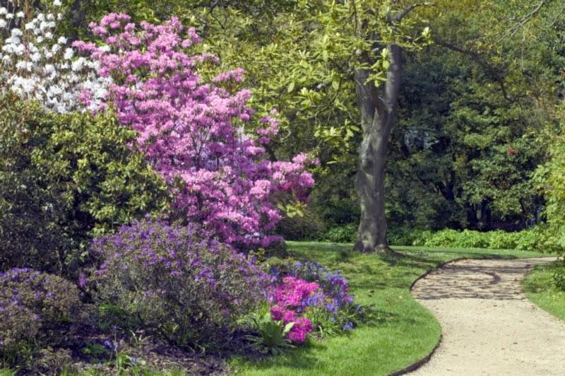 Borde Hill Garden - Garden of Allah