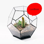 Latest Modern Terrarium Ideas Android APK Download Free By LordBless