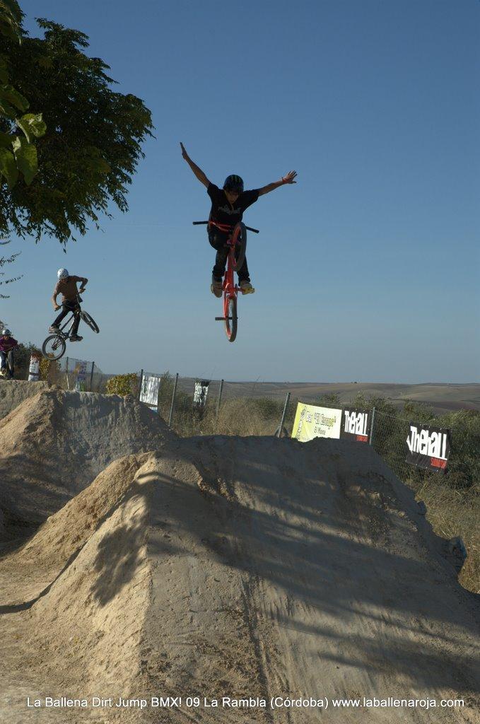 Ballena Dirt Jump BMX 2009 - BMX_09_0077.jpg