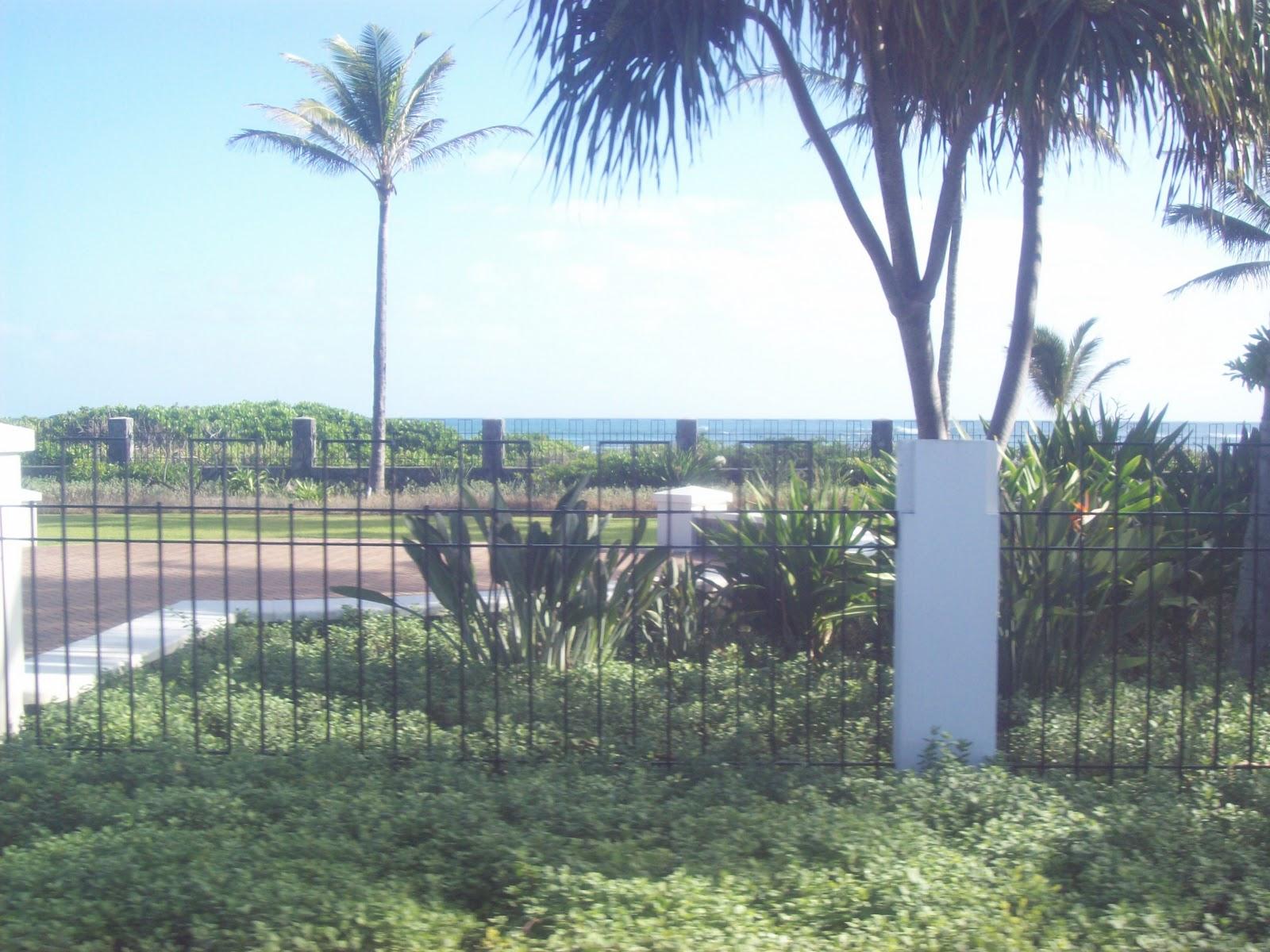 Hawaii Day 3 - 100_6925.JPG