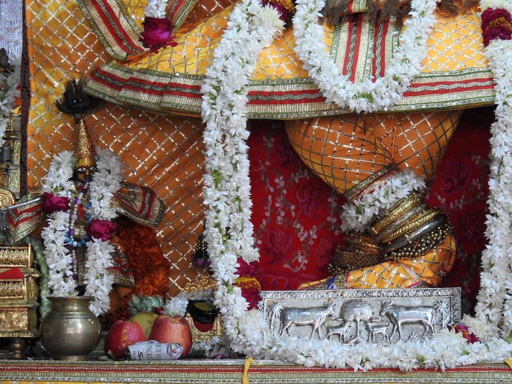 Radha Govind Devji Deity Darshan 05 Jan 2017 (8)