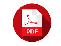 CGA Auditor & Junior Auditor Previous Questions Solution - pdf ফাইল