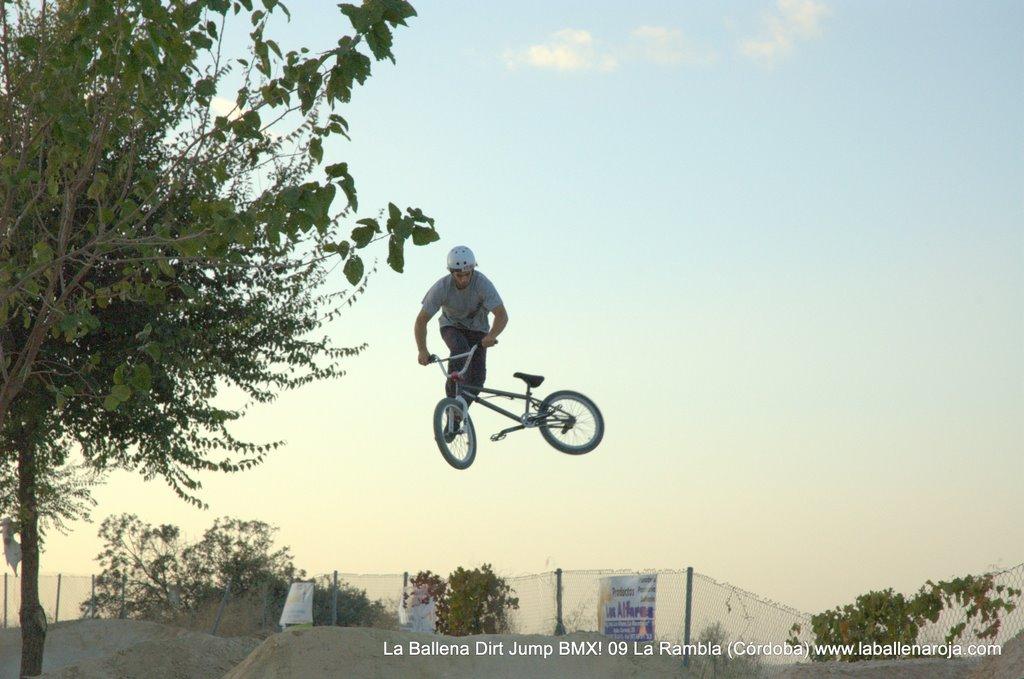 Ballena Dirt Jump BMX 2009 - BMX_09_0144.jpg