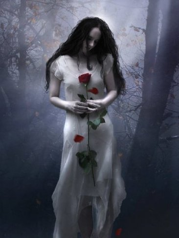 Fog And Rose, Gothic Girls