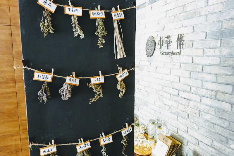 小草 作 Grassphere 現場植物.JPG