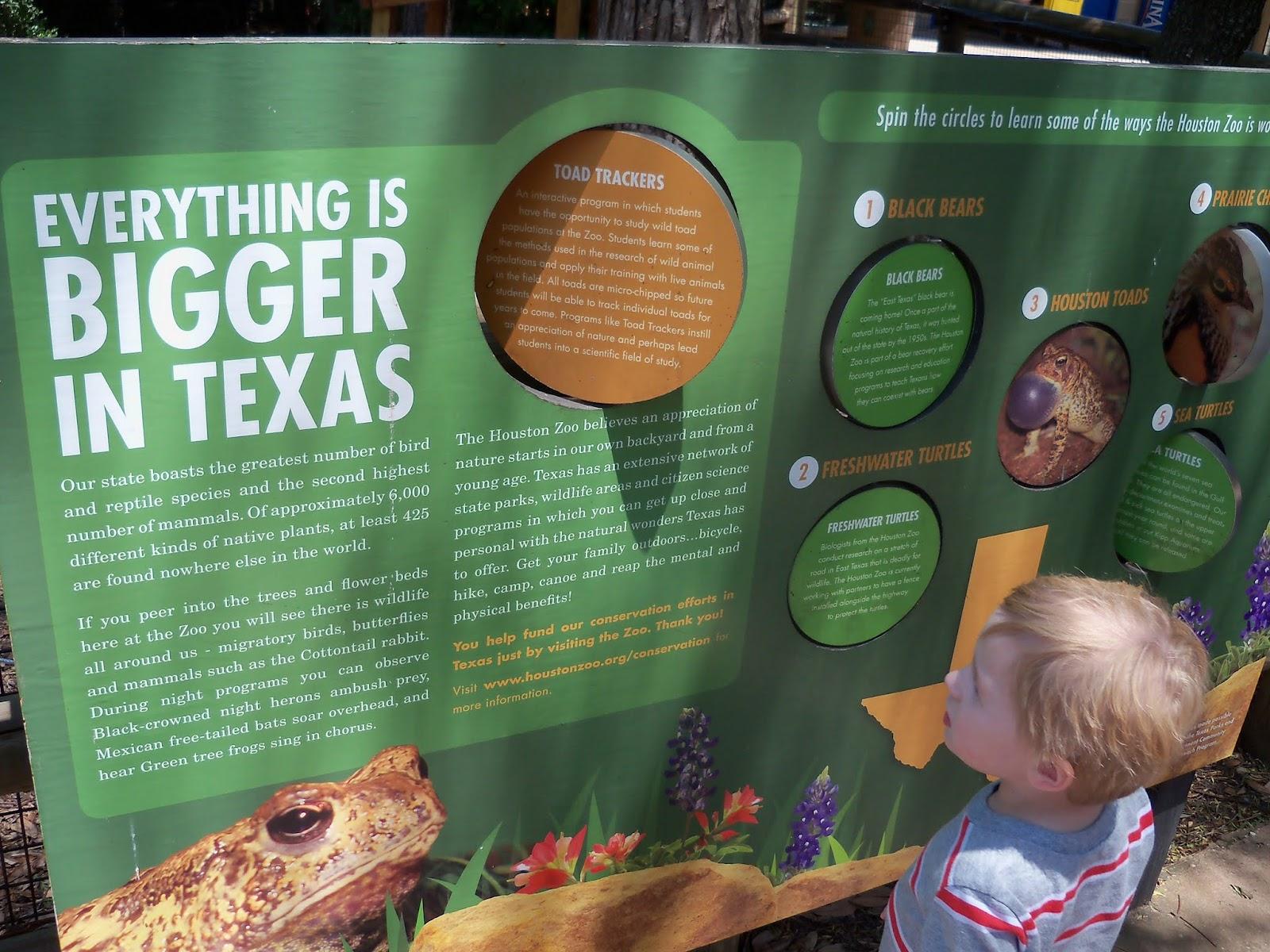 Houston Zoo - 116_8494.JPG