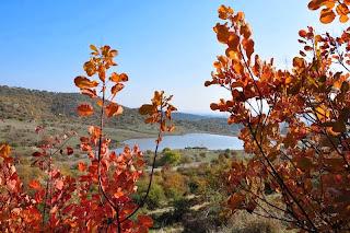 Λίμνη του Αγίου Βησσαρίωνα