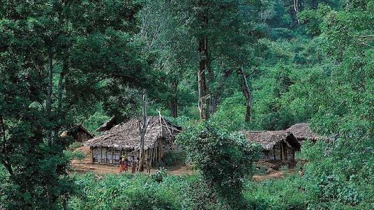 Western Ghats, Tamil Nadu, India: Anaimalai Hills