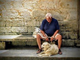 The Pet Boost: Furred Friends Help to Seniors Feel Less Lonely.