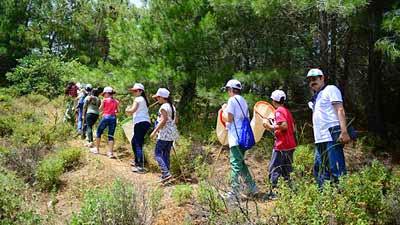 Böcek Sever Çocuklar Spil Dağı'nda Gözlem Yaptı