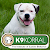 K9 Korral Dog Training & Pet Supply Center