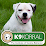 K9 Korral Dog Training & Pet Supply Center's profile photo