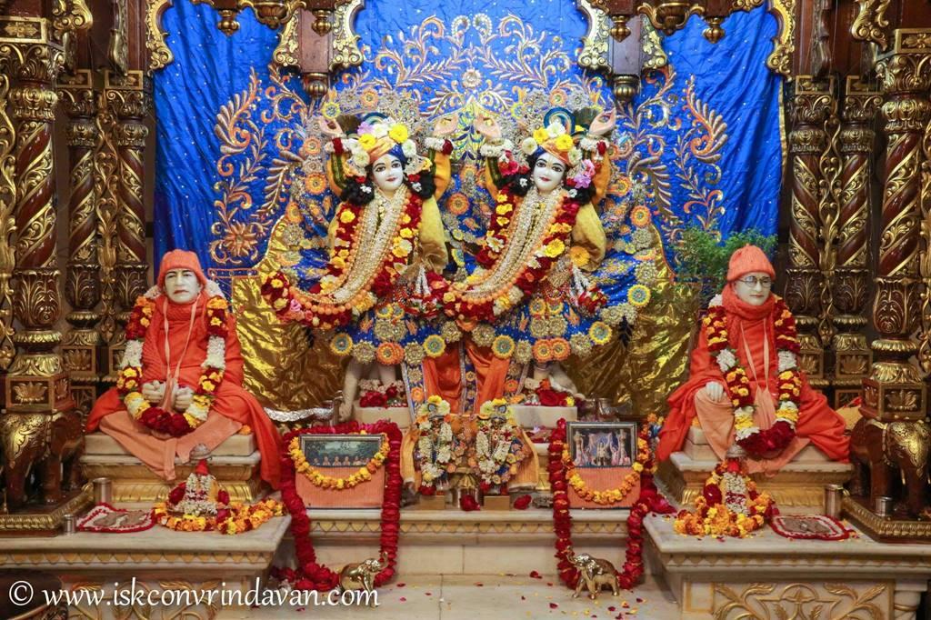 ISKCON Vrindavan Sringar Deity Darshan 03 Feb 2016 (6)