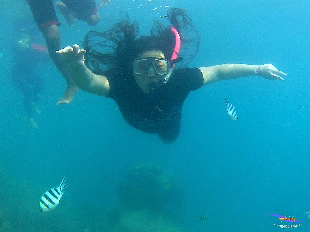 pulau pari 050516 GoPro 53
