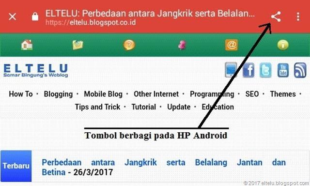 Tombol Berbagi pada HP Android