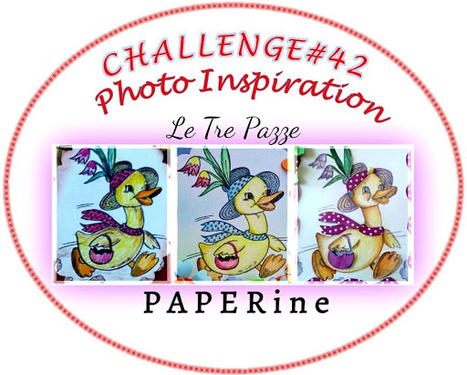 challenge#41-42