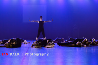 Han Balk Voorster Dansdag 2016-4319-2.jpg