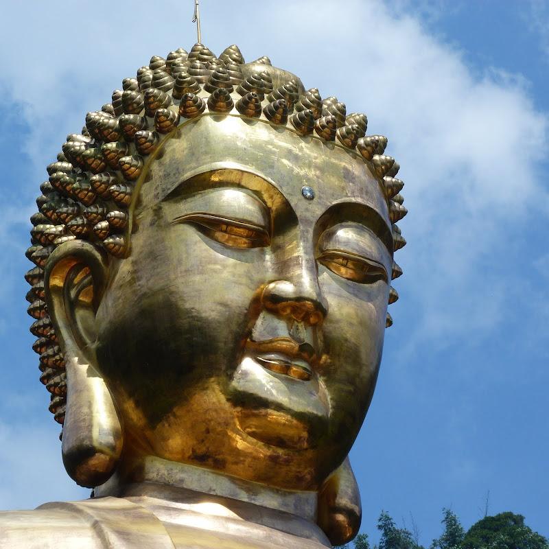 Puli. Divers et Golden Buddha.J 12 - P1170604.JPG
