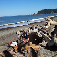 Rialto Beach May 2013 - IMG_20130505_104109_211.jpg