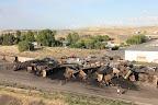 Coal Train Derailment, Mesa, WA - Tony Eveland credti