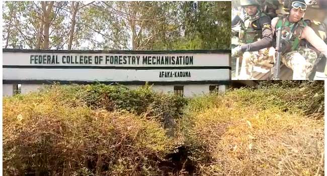 School Abduction: 39 Students Still Missing – Govt