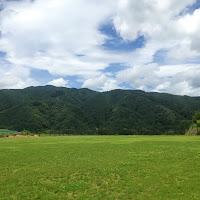 SUMMER SERIES  7.13.14 長野 やぶはら こだまの森