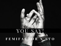 NEW MUSIC: You Say By Femi Factor featuring STO