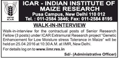 IIMR Walk in Interview 2016